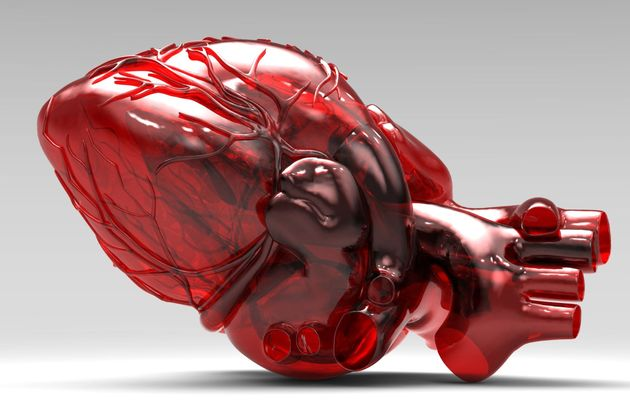 3D-printed internal organs: is it real?