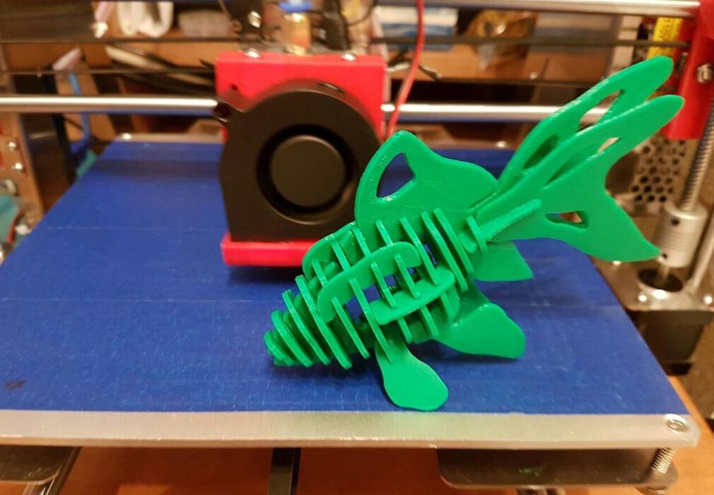 3D printed puzzle fish
