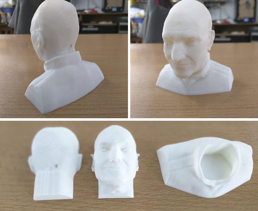 Captain Jean-Luc Picard Star Trek 3D print