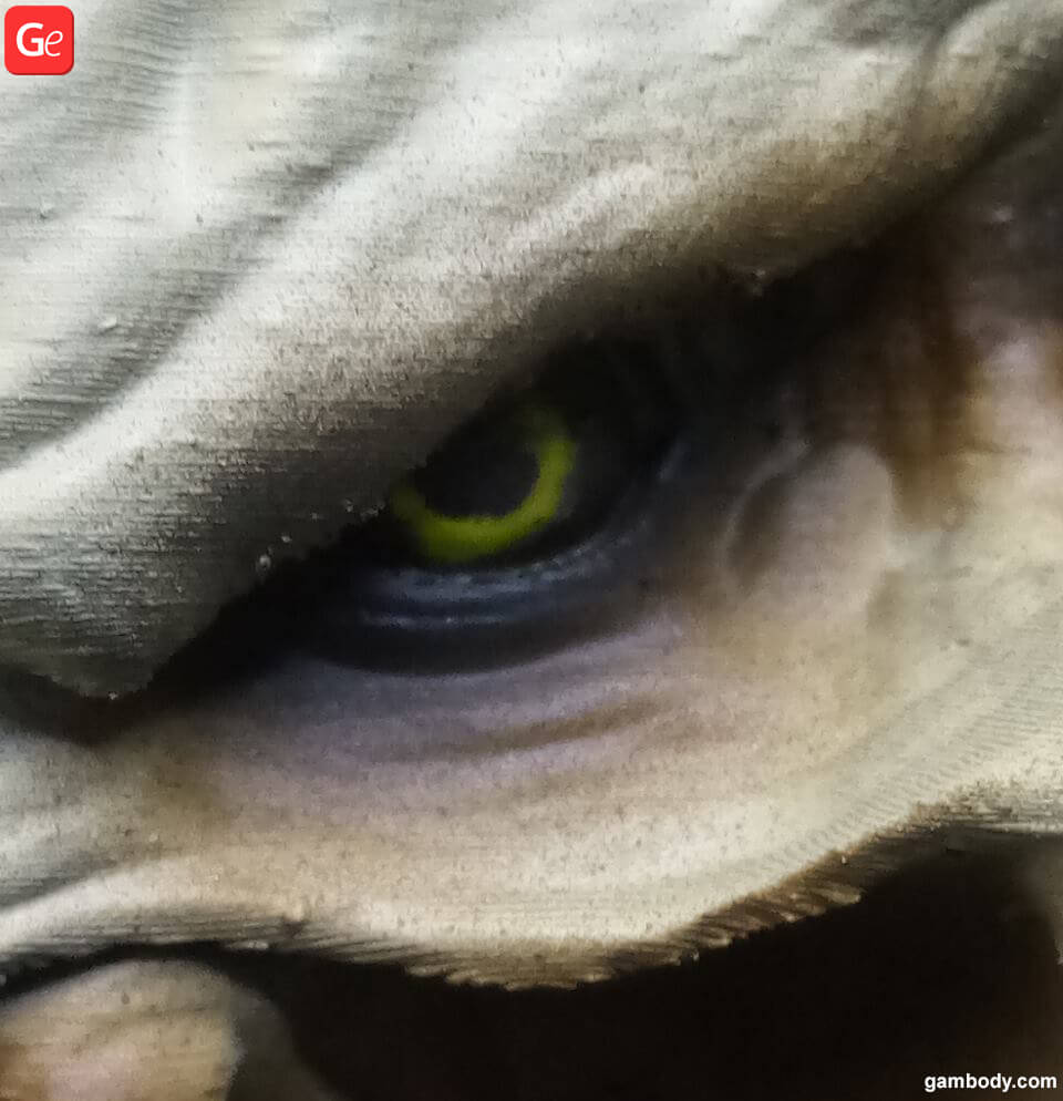 How to make realistic eyes step by step