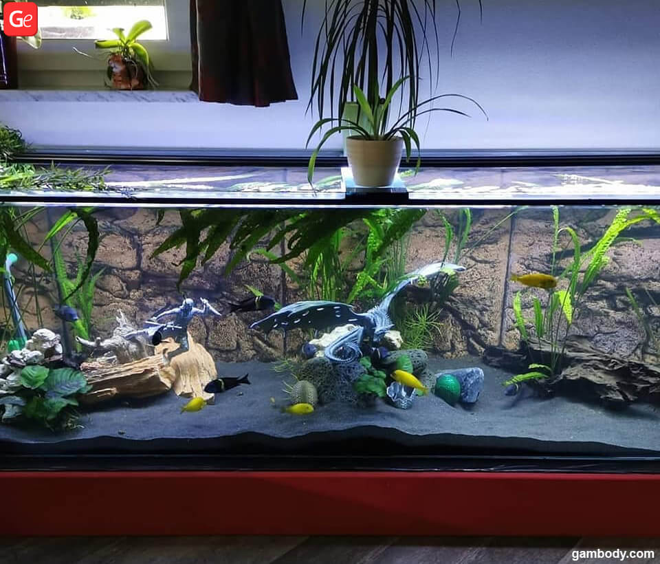 Fantastic Aquarium Decorations 3d Printed Inspired By Game Of Thrones