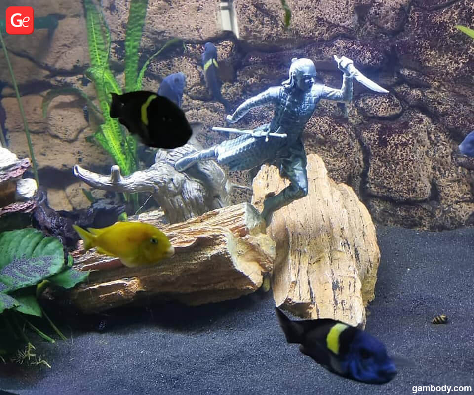 Fish tank decorations Arya 3D printed from Game of Thrones
