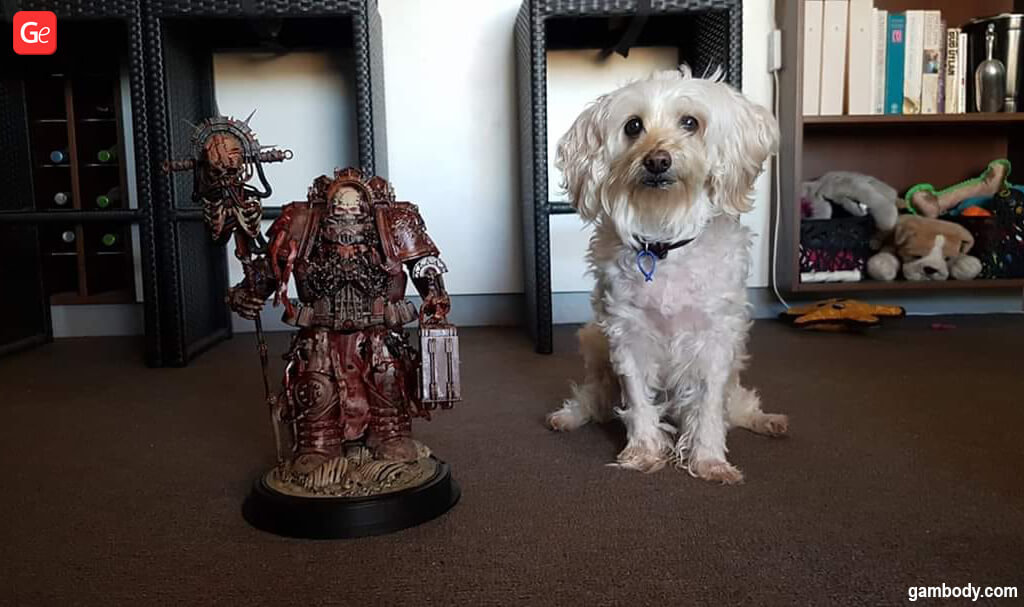 Chaplain 40K model for 3D printing and a dog to compare size