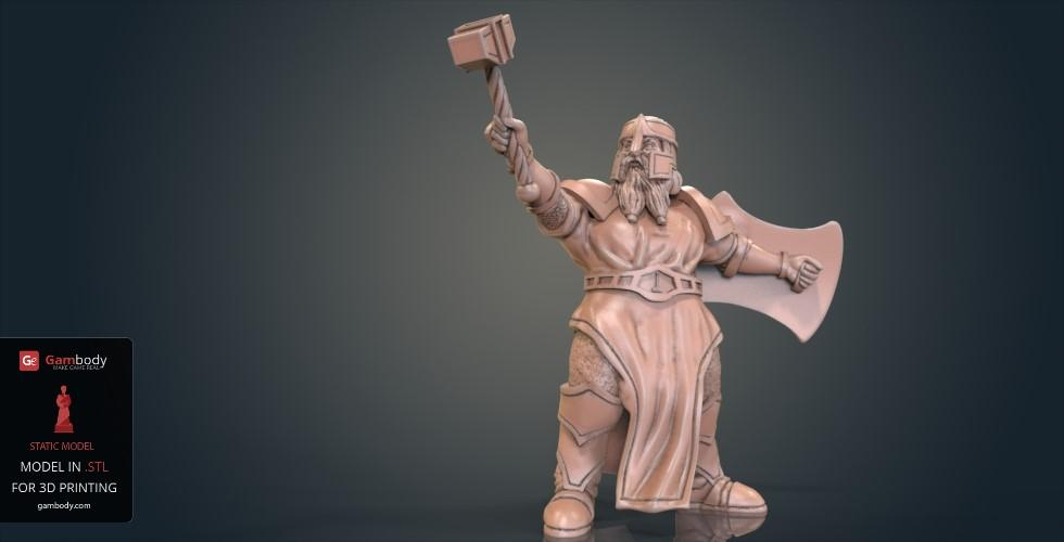 Buy Dwarf Cleric Warrior 3D Printing Model | Static