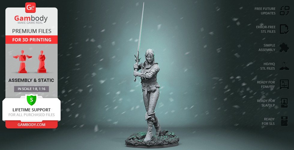 Buy Ciri 3D Printing Figurine | Assembly